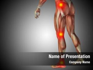 Man conceptual human anatomy lower