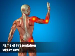 Man conceptual human anatomy upper