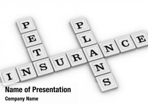 Pets insurance powerpoint template