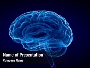 Brain science human blue
