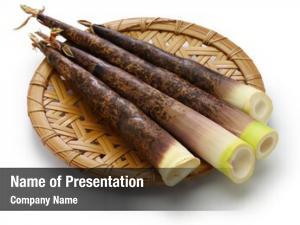 Bamboo japanese madake shoots white