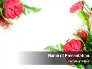 Elements floral design