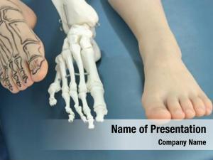 Drawing human foot bones skin,
