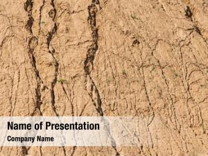 Ground detail dry desert texture