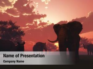 Render of wild powerpoint template