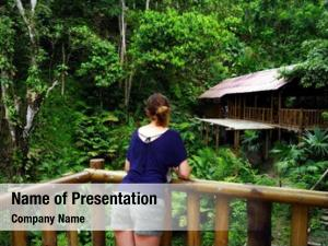 Jungle jungle cottage
