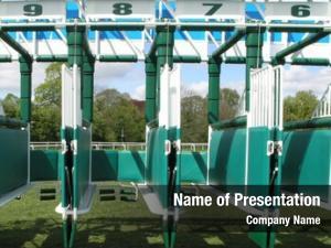 Starting horse racing stalls