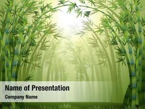 Trees illustration bamboo inside forest