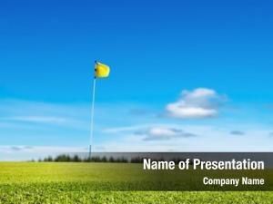 Focus golf field, grass, shallow