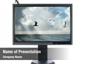 Seascape lcd monitor over white