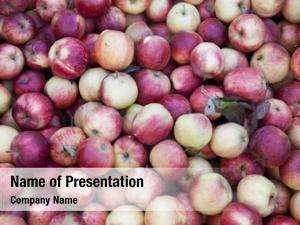 Apples fresh red market