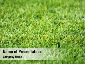 Football artificial grass ground