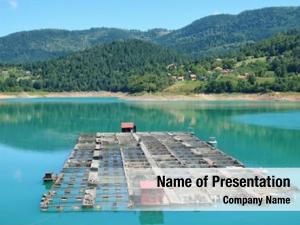 Lake, fishery zaovine serbia