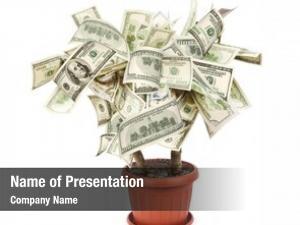 Made money tree dollar bills,