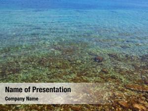 Clear sea crystal water