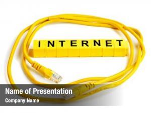 Cat internet cable