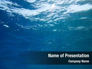 Scene tranquil underwater copy