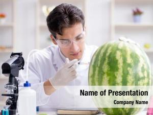 Watermelon scientist testing lab