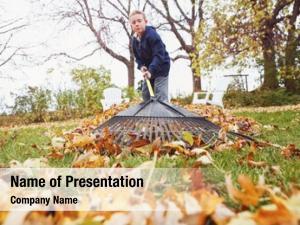 Leaves boy raking yard earn
