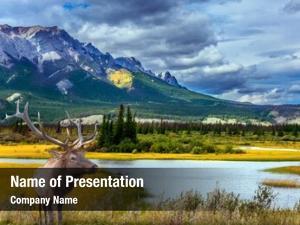 Rocky mountains grandiose landscape in the rocky
