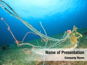 Environmental ghost net problem