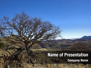 View african landscape namibian landscape