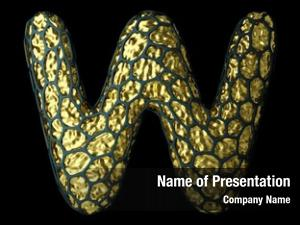 Natural letter made snake skin