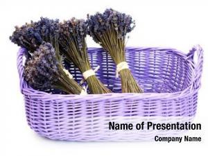 Flowers basket lavender white flowers