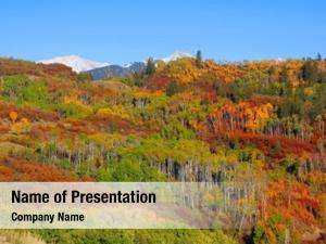 Splendor colorful autumn rocky mountains