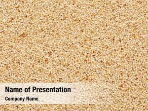 Ivory gluten free teff grain
