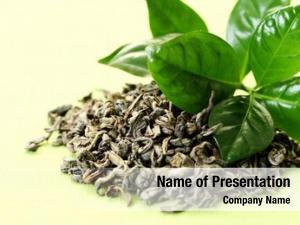 Tea pile green herbal medicine