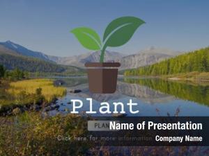 Plant planting plant trees green