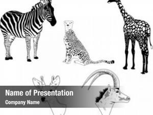 Animals illustration wild savanna