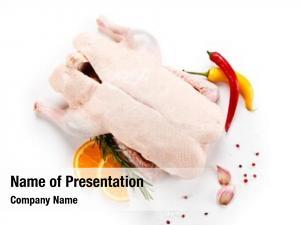 Chicken fresh raw white