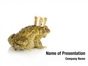 Toad toad prince wearing gold
