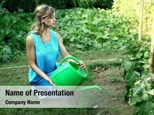 Watering young woman vegetables vegetable