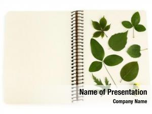 Notebook dry plants close