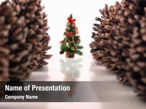 Christmas christmas theme: pine tree