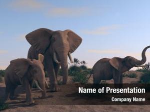 3d of walking elephants