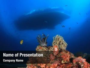Underwater boat scuba diving