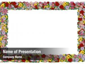 Series floral frames