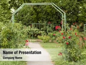Botany green arch garden