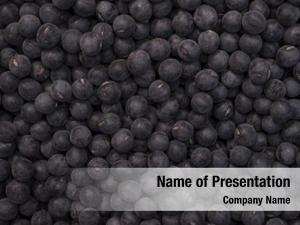 Raw dried powerpoint template