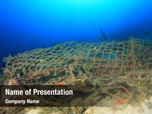 Net discarded fishing pollutes reef