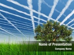 Over green grass blue sky