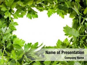 Your parsley frame text