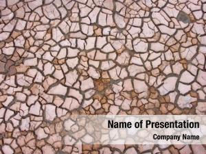 Dry soil in cracks