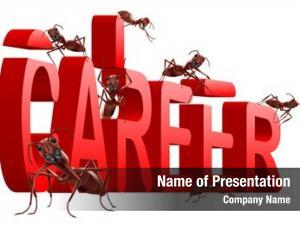 Red ants building word career