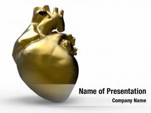 Heart model human heart gold