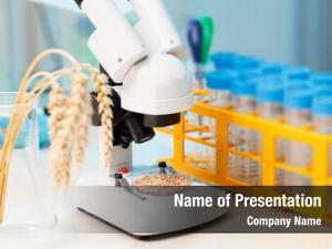 Wheat control cereal gmo molecules,